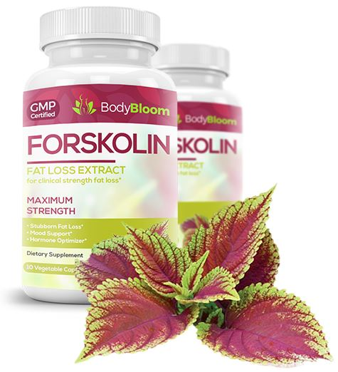The Weight Loss Wonder Forskolin: A Beginner's Guide