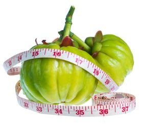 fruit-of-garcinia-cambogia