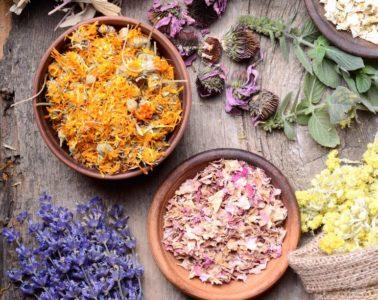 the-calming-herbs