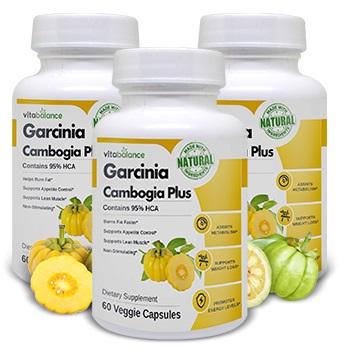 3 bottles of garcinia cambogia