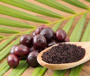 Acai Berry Superfood Powder