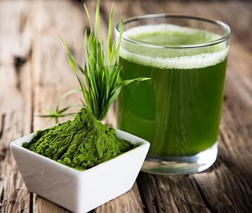 Wheatgrass Superfood Powder and Drink