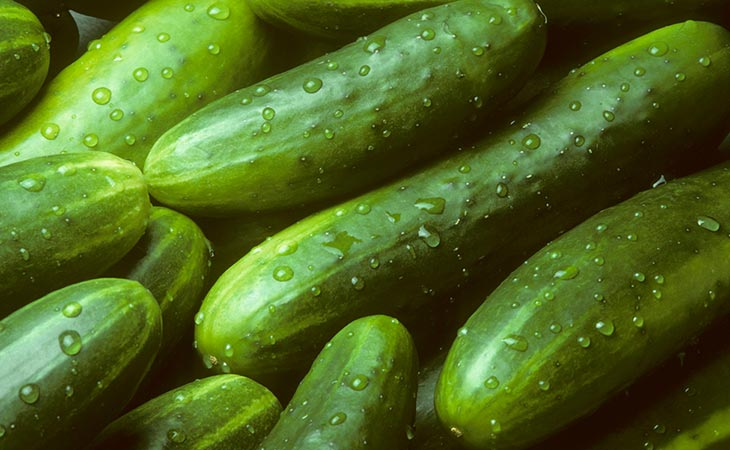 Cucumber 96% Water Food/Nutrition Facts