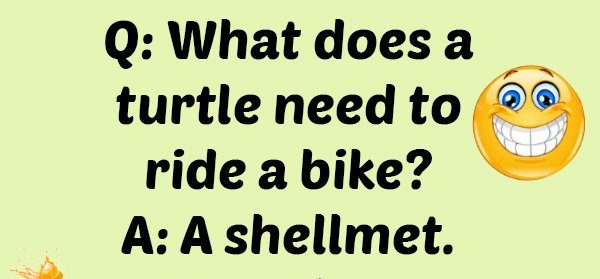 What does a turtle need to ride a bike?